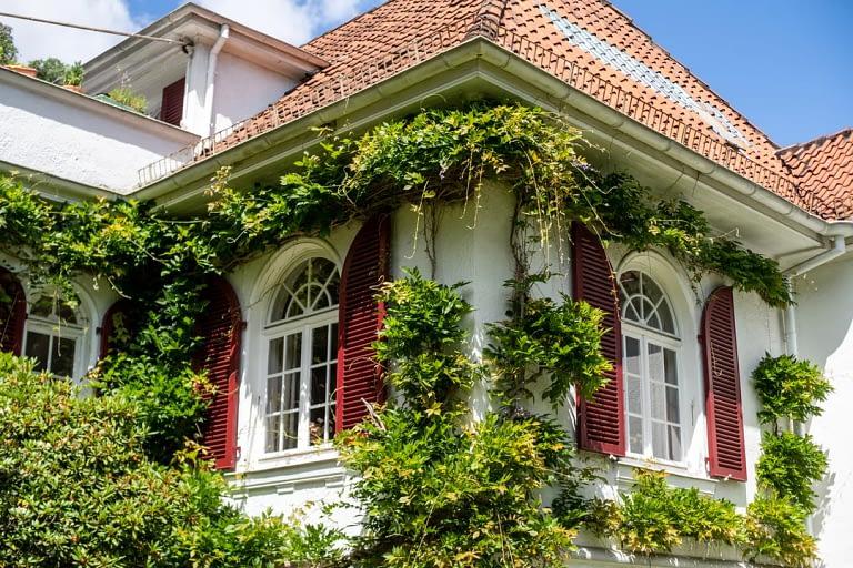 Geschichte eines Hauses Altbau Vila Bremen Fotobuch Reportage 12